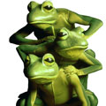 Frogs2_upcoming.jpg